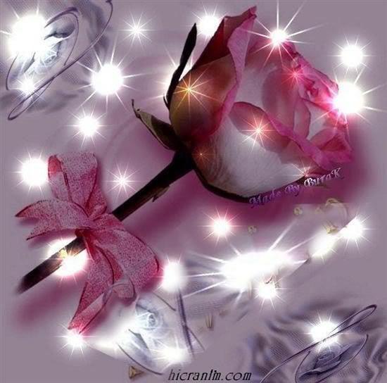 Vjeshta dhe bukuritë e saj - Faqe 2 2VtikU5AHh3uAmGDa5XoBnTOSrOhzMys_T6UWHWHdesL3gNda4cIyQ==